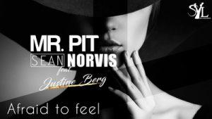 Mr. Pit & Sean Norvis feat. Justine Berg - Afraid to feel